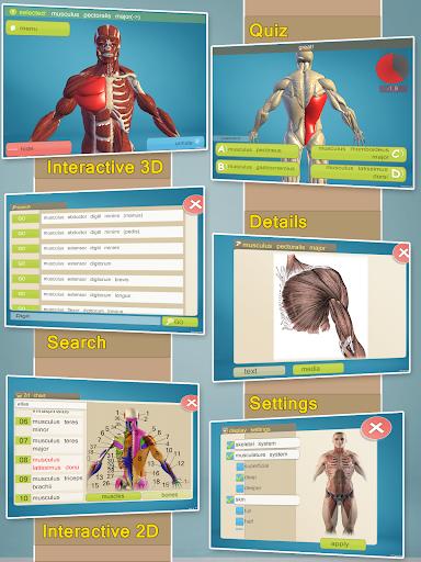 下載玩新版教育遊戲Easy Anatomy 3D(learn anatomy) APP!推薦高CP值教育平台