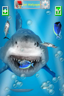 Angry Shark Jaws Crack Screen - screenshot thumbnail