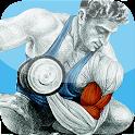 FitnessE icon