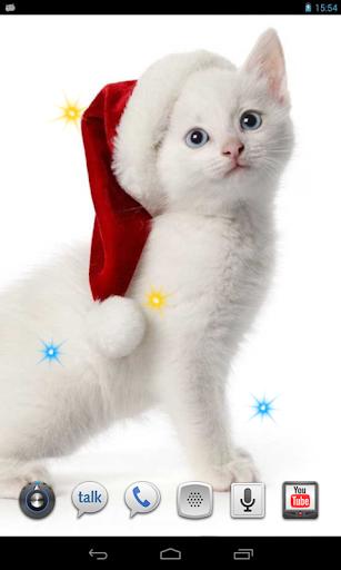 New Year Kittens HD LWP