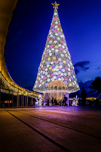 Christmas Tree at VIVO City by Charles Ong - Public Holidays Christmas ( night lights, christmas, christmas tree, , mood, mood factory, holiday, hanukkah, red, green, lights, artifical, lighting, colors, Kwanzaa, blue, black, celebrate, tis the season, festive, decoration, object )