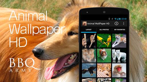 Animal Wallpaper HD