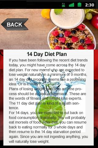 14 Day Diet Plan