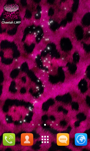 Cheetah Wallpapers for Free