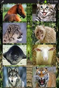 اصوات الحيوانات - screenshot thumbnail