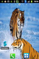 Screenshot of Angry Tiger Magic Touch