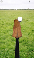 Screenshot of Cricket Tuk Tuk