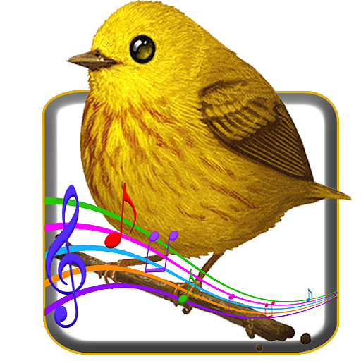 Bird Sounds file APK Free for PC, smart TV Download