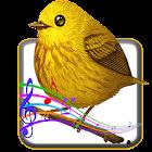 Bird Sounds icon