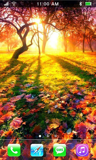 Autumn Leavs live wallpaper