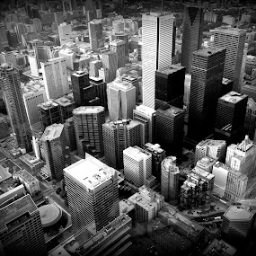 CN Tower Black and White  by Christopher Charlton - Black & White Buildings & Architecture ( canada, cities, black and white, toronto )