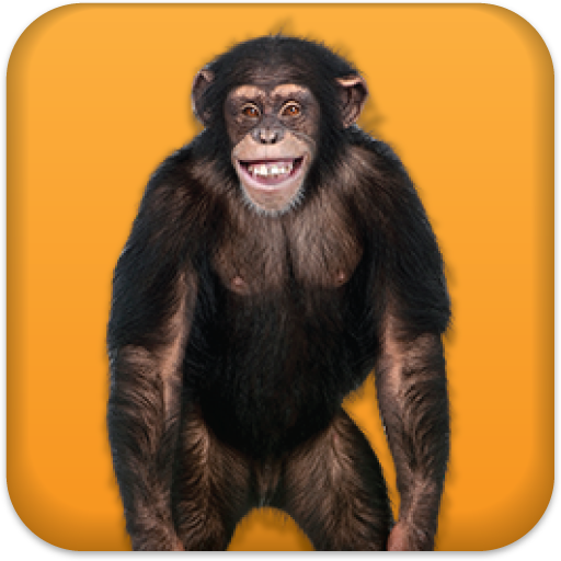 Talking Monkey Icon