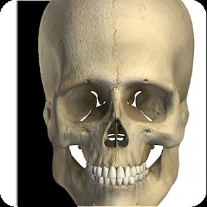 Visual Bones Gratis