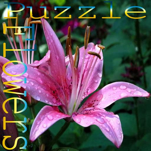 Puzzle flowers 1 jigsaw