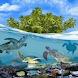 Turtle World Live Wallpaper