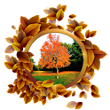Nature Frames Photo Editor icon