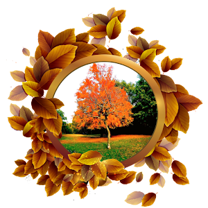 Nature Frames Photo Editor Android Apps On Google Play