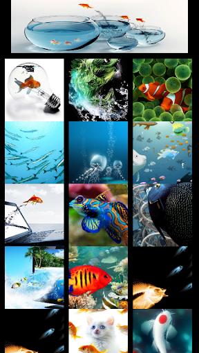 Show fish wallpaper