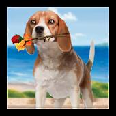 Puppy Love Live Wallpaper