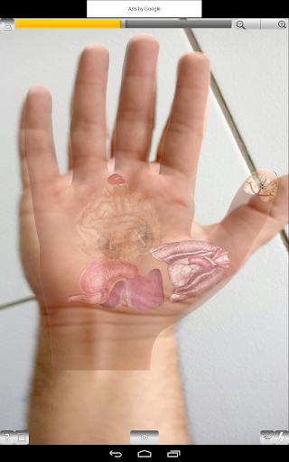 玩醫療App|AcuMapa:轻松针灸免費|APP試玩