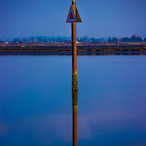Double arrow by Gerard Toney - Landscapes Waterscapes ( water hazard, water, reflection, warning sign, sea posts, arrow, hazard, posts, sea, warning,  )