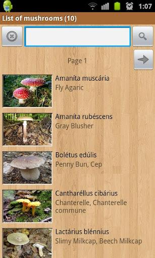 書籍必備APP下載|Mushroom hunter 好玩app不花錢|綠色工廠好玩App