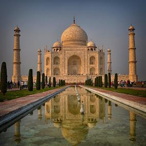 The Taj by Phil Robson - Buildings & Architecture Public & Historical ( reflection, taj mahal, wonder, monument, india,  )