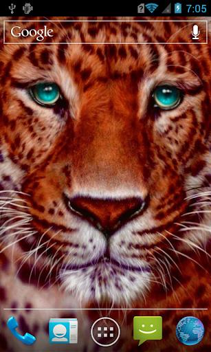 Beautiful tiger live paper