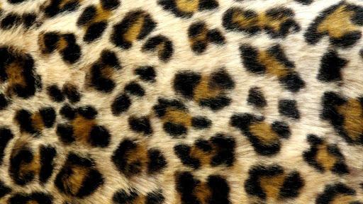 Leopard Print Live Wallpaper