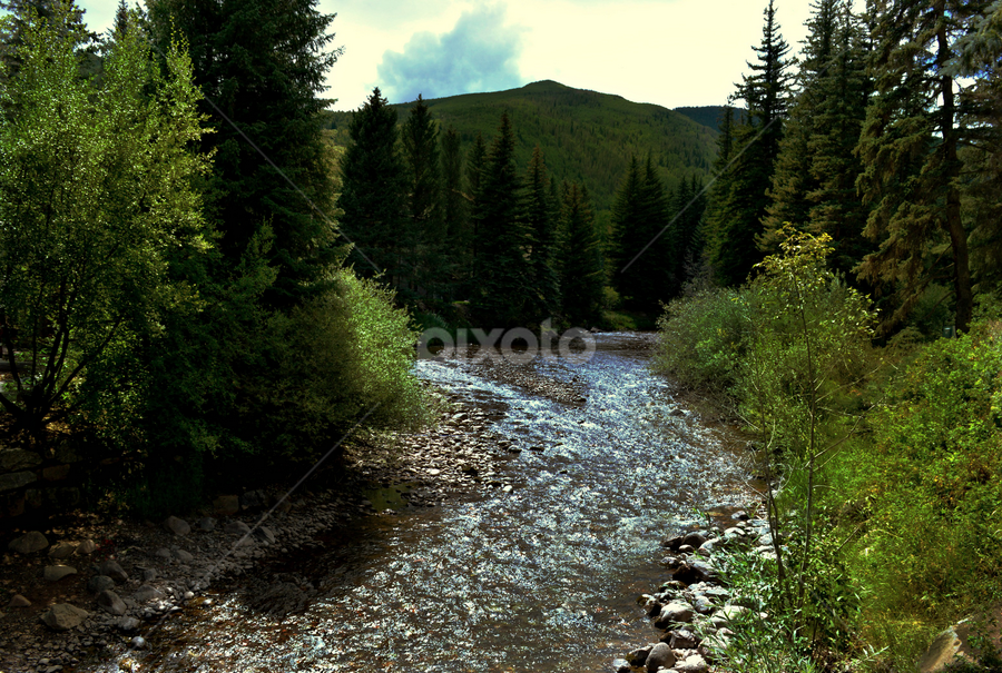 by Becky Holmes - Landscapes Mountains & Hills ( mountains, mountain, brooks, trees, streams, rivers )