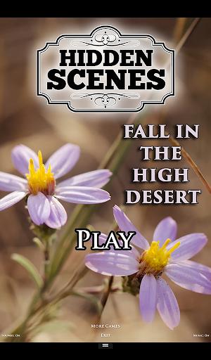 Hidden Scenes High Desert Fall