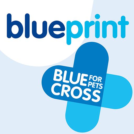 Blueprint by blue crossapp app blueprint by blue cross logo app malvernweather Image collections