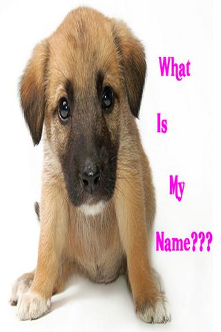 Cute Girl Dog Names App