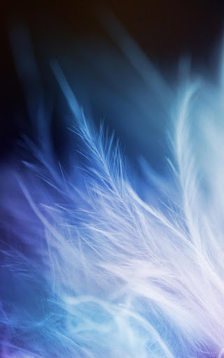 【免費個人化App】Feather Live Wallpaper-APP點子