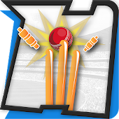 Cricket Game Hitwicket - 2015