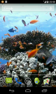Sea fish Video Live Wallpaper - screenshot thumbnail