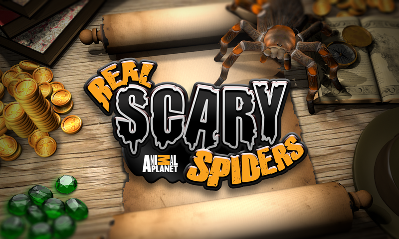 Real Scary Spiders- screenshot
