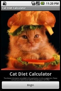 Cat Diet Calculator - screenshot thumbnail