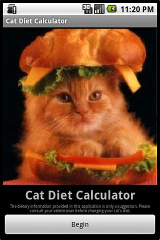 Cat Diet Calculator - screenshot