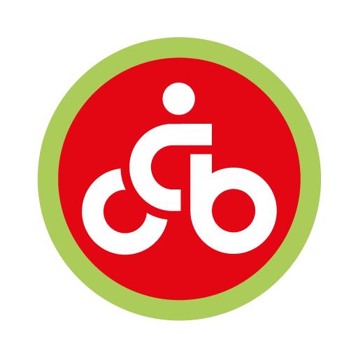 MOL Bubi application
