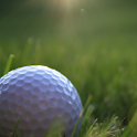 Real 3D Golf Live Wallpaper logo