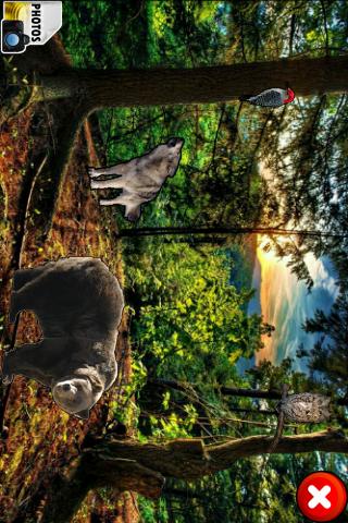 World of animals - screenshot