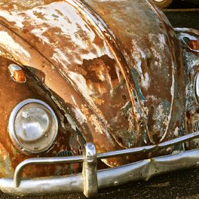 -Last Leg- by Jermaine Pollard - Transportation Automobiles ( vw, vehicle, meet, volkswagen )