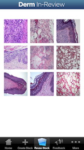 Dermatology In-Review- screenshot thumbnail