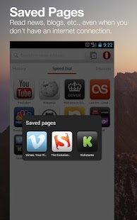 Opera browser beta Screenshot 16