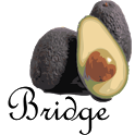 Avocado My Tracks Bridge icon