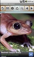 Screenshot of US Wildlife Wonders