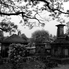 Grave Yeard  by Mriganka Sekhar Halder - Black & White Objects & Still Life