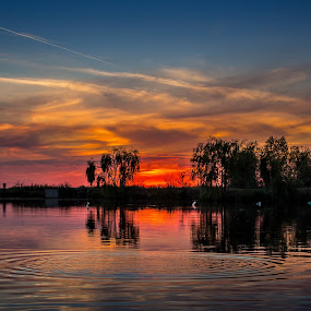 Lake sunset by Adrian Ioan Ciulea - Landscapes Sunsets & Sunrises ( water, reflection, waterscape, sunset, trees, lake, , golden hour, sunrise )