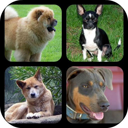 World Dog Breeds Quiz LOGO-APP點子